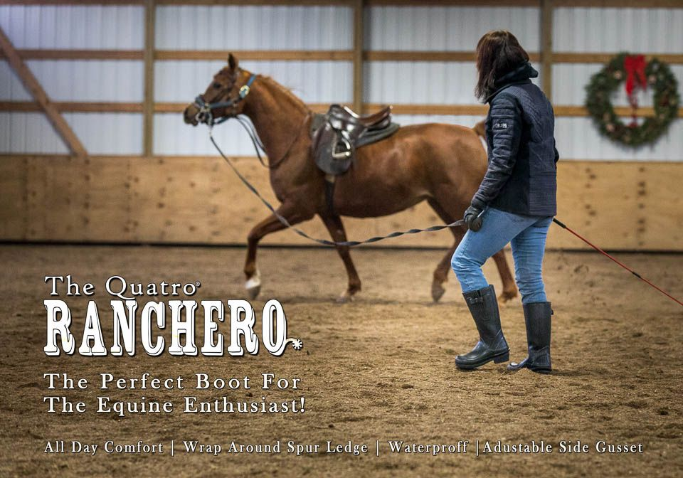 Ranchero-1